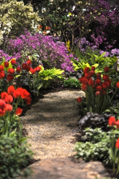 Pathway in an English garden - that's what it reminds me of