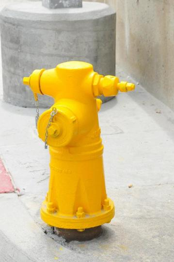 The fire hydrants were yellow. I thought it was just for a particular area, but they were all over the city.