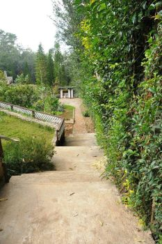 Stairs leading down to the gardens